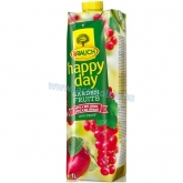 Rauch Happy day Garden fruits alma-pirosribizli 100 % 1 l
