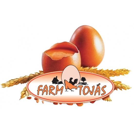Farm Tojás