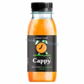 Cappy Plus Great Start vegyesgyümölcslé C-vitaminnal és mézzel 250 ml