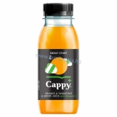Cappy Plus Great Start vegyesgyümölcslé narancs-mandarin-szőlő 250 ml